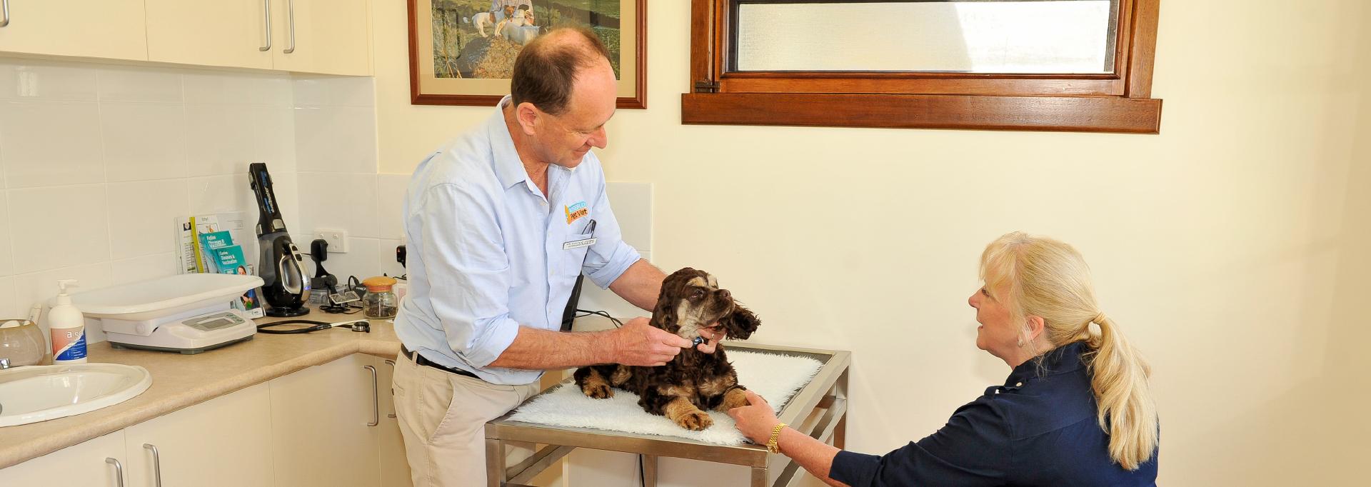 Dr Dennis Cutts-rosebud-pet-vet